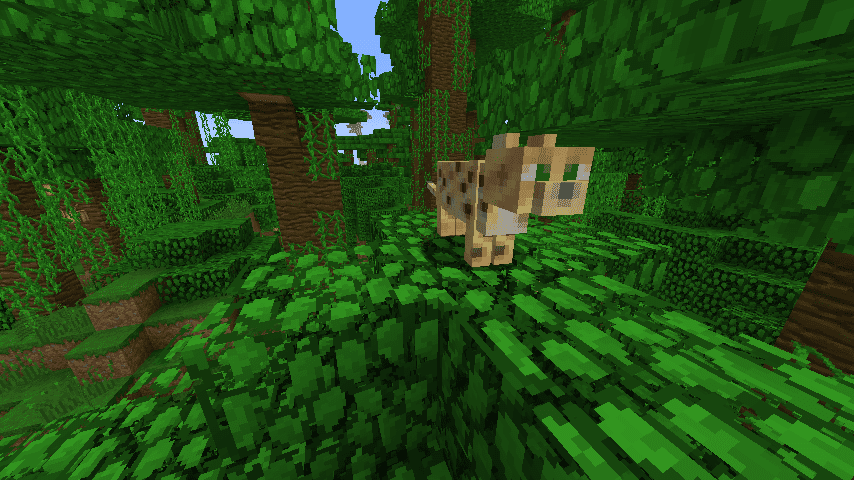 Animals Explained Ocelots - Minecraft teleport player to location