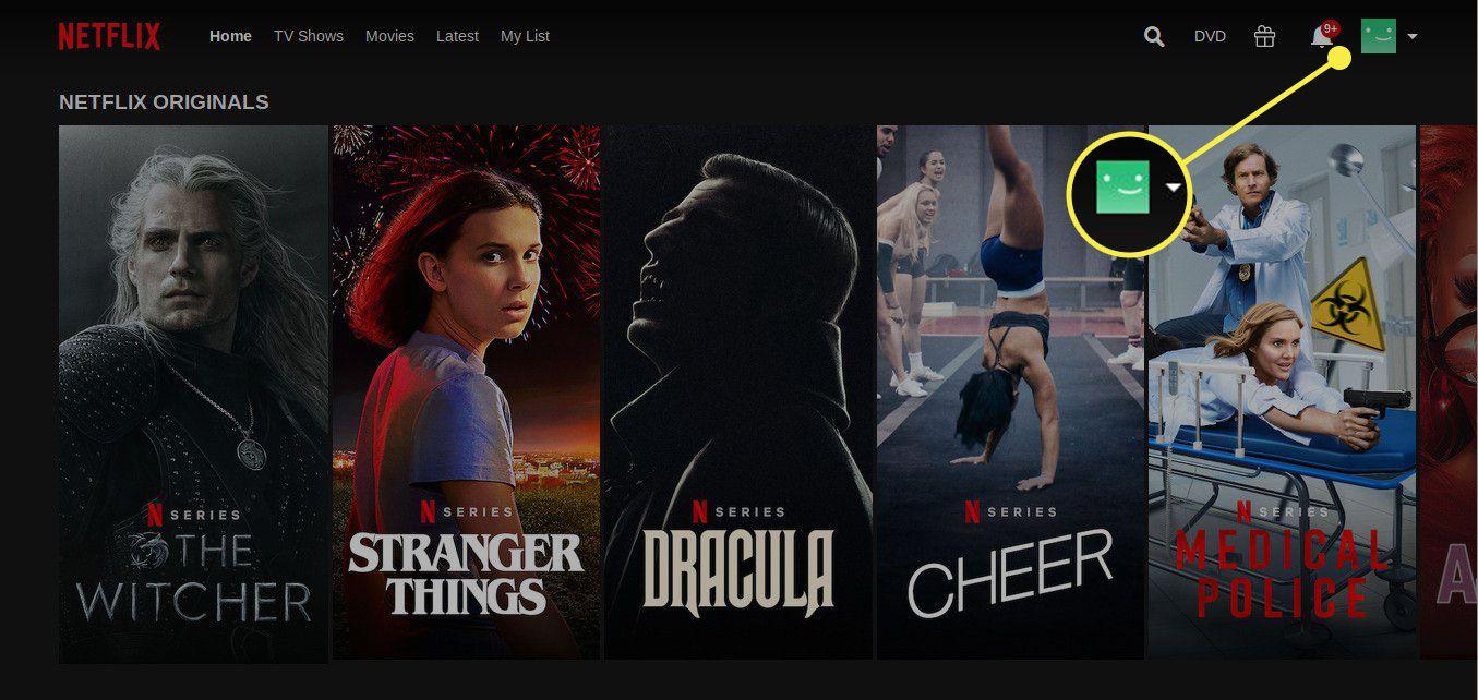 The account icon on Netflix
