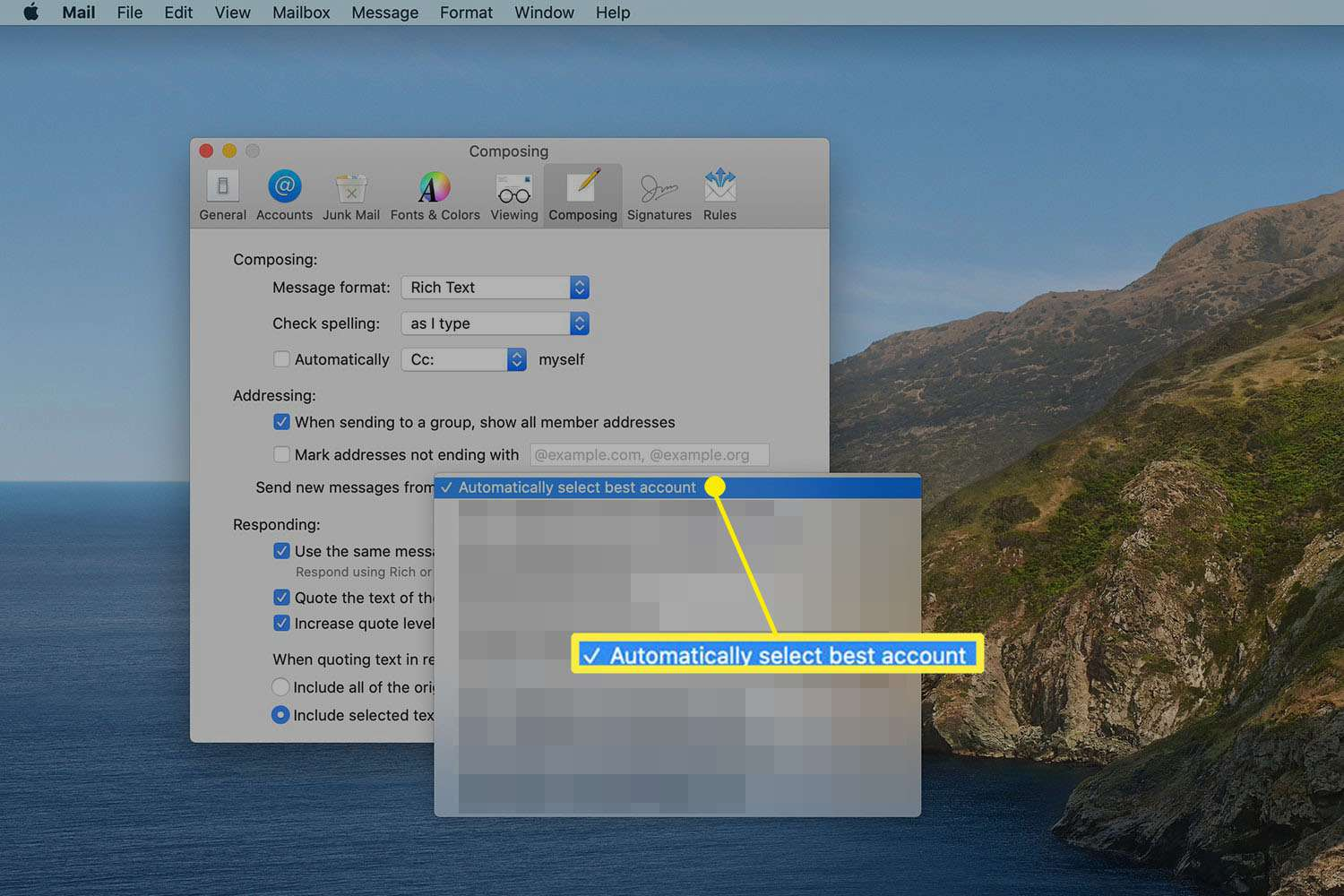 Composing preferences in Mac Mail
