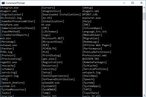 Screenshot of a Command Prompt window in Windows 10