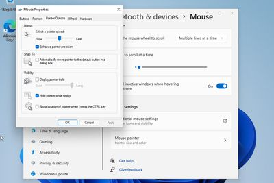 Mouse Options Menu in Windows 11.