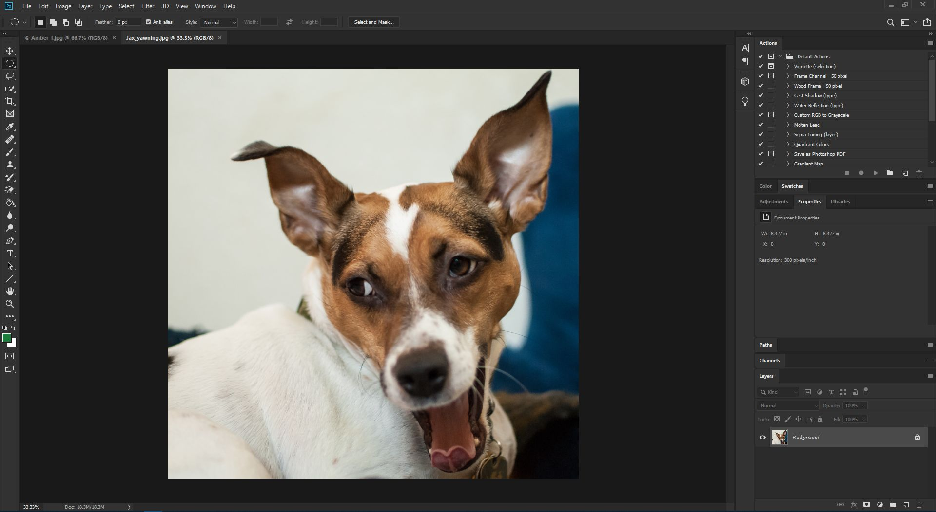 An image in Photoshop CC.