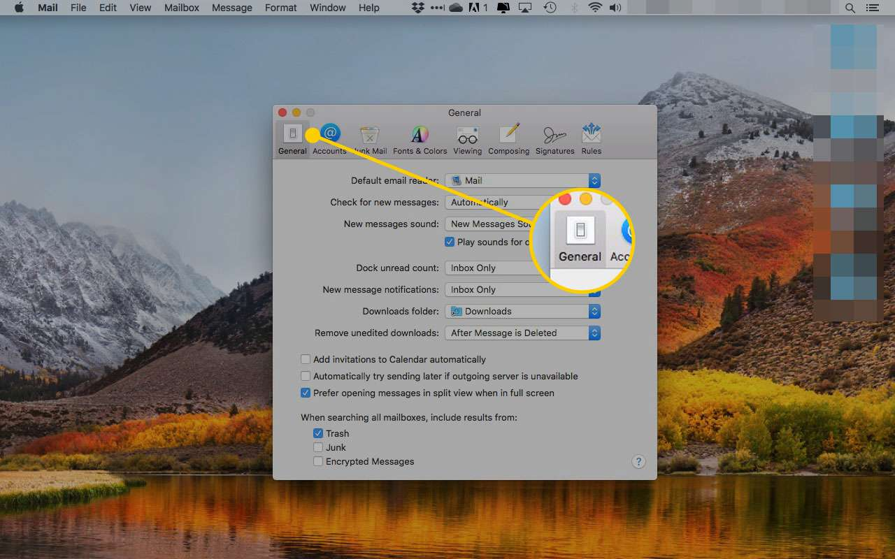 macOS X Mail preferences with the General tab highlighted