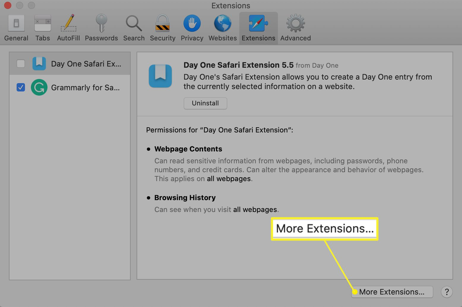 Extensions preferences with More Extensions highlighted