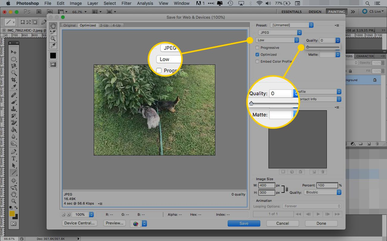 How to Use the Photoshop Save for Web Tool