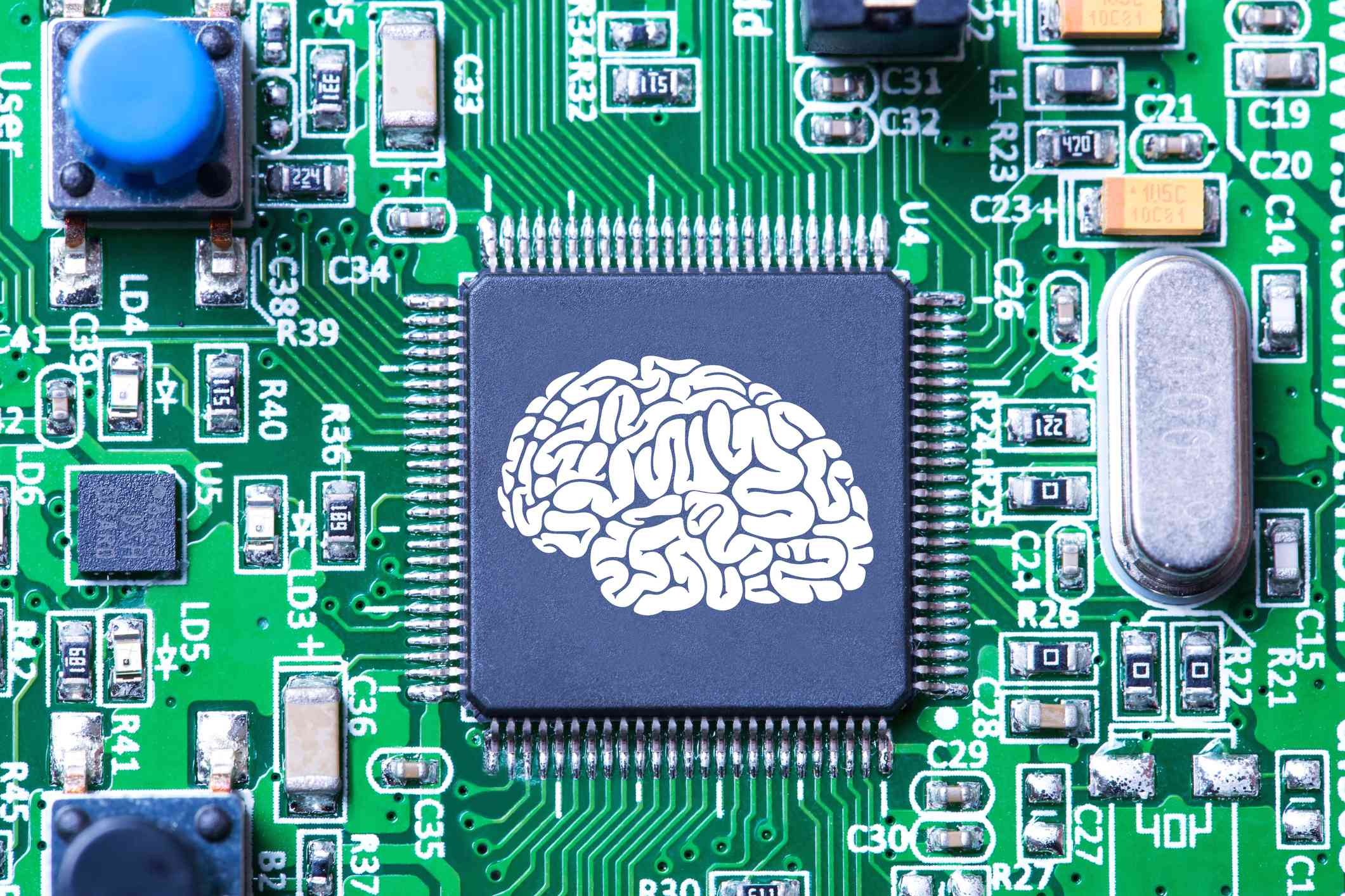 AI concept showing a picture of a human brain on a computer chip