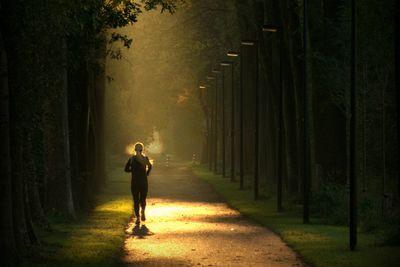 Running under trees.