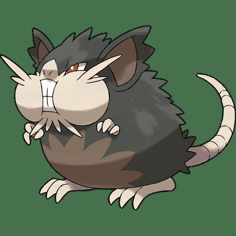 A Raticate pokemon.