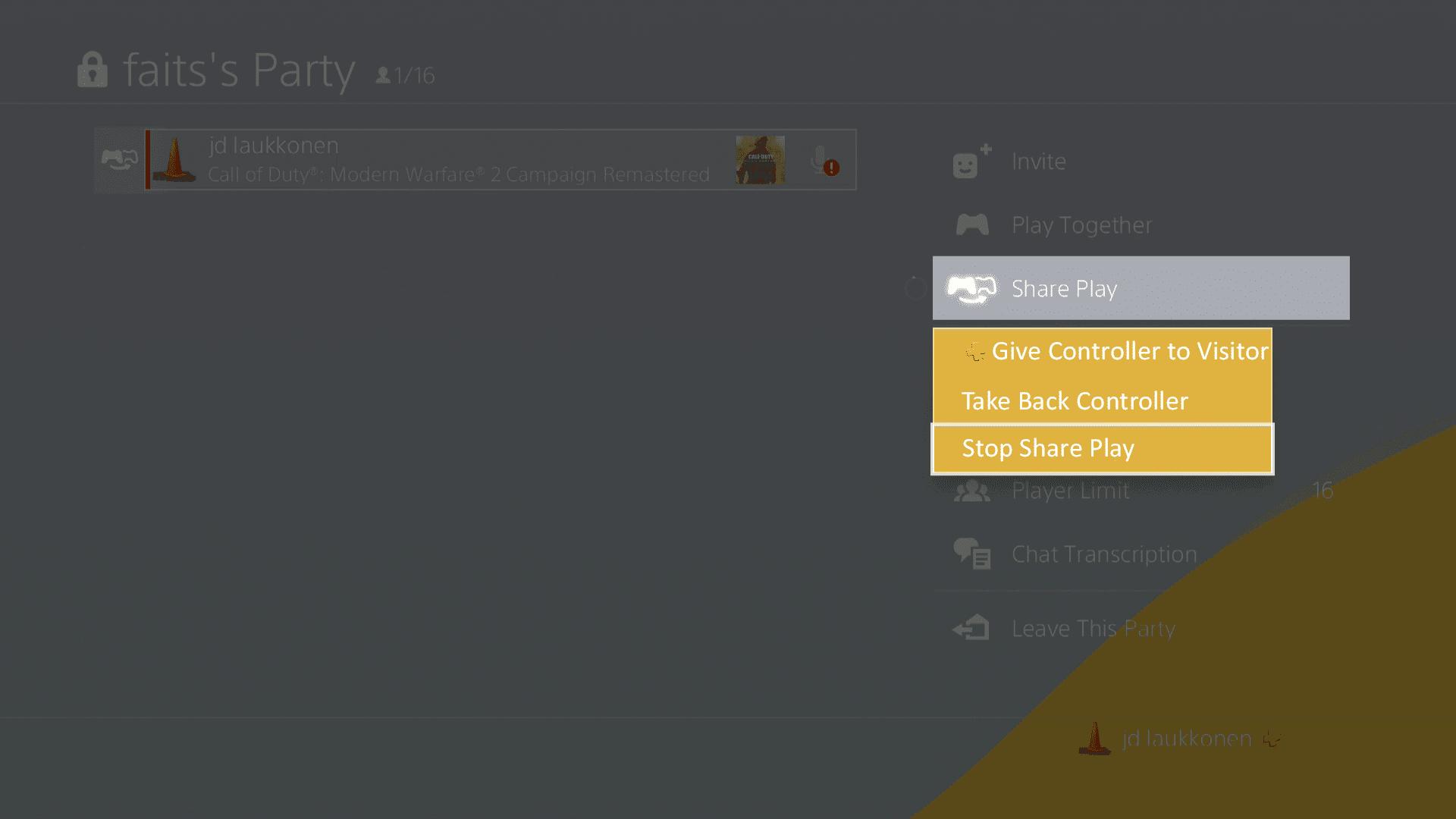 A screenshot of PS4 Share Play.