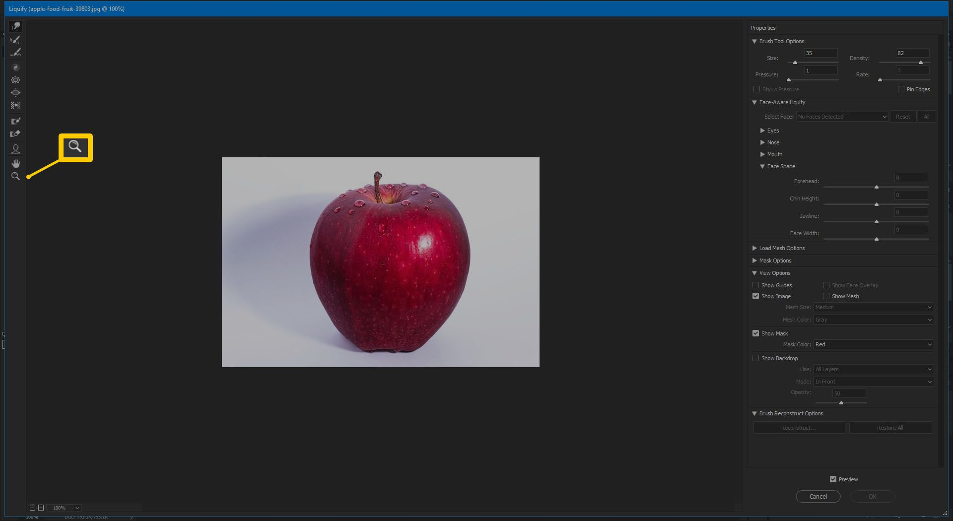Screenshot of the Zoom Tool in Photoshop CC 2019.