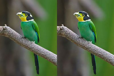 Sample of Loss of Detail Due to JPEG compression