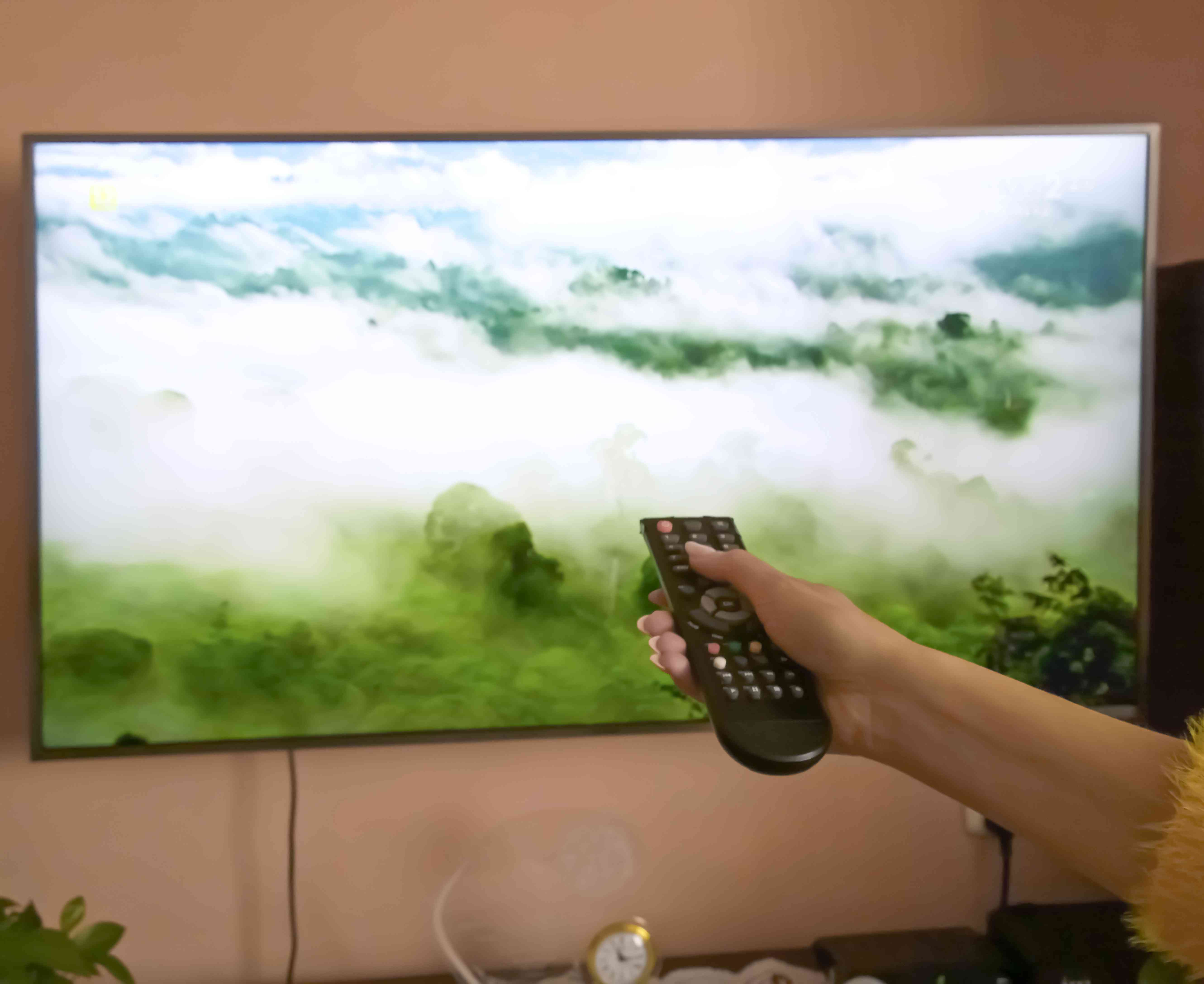 Person Operating Remote At Home