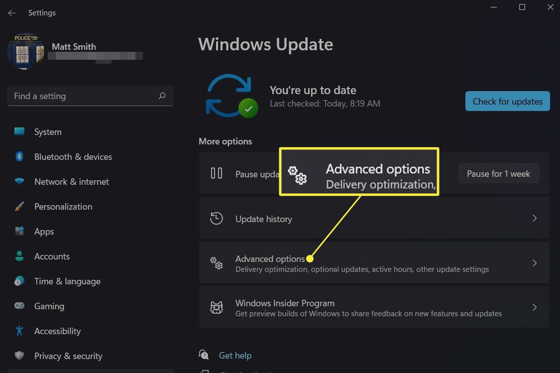 Windows Update in Windows 11 with Advanced Options highlighted