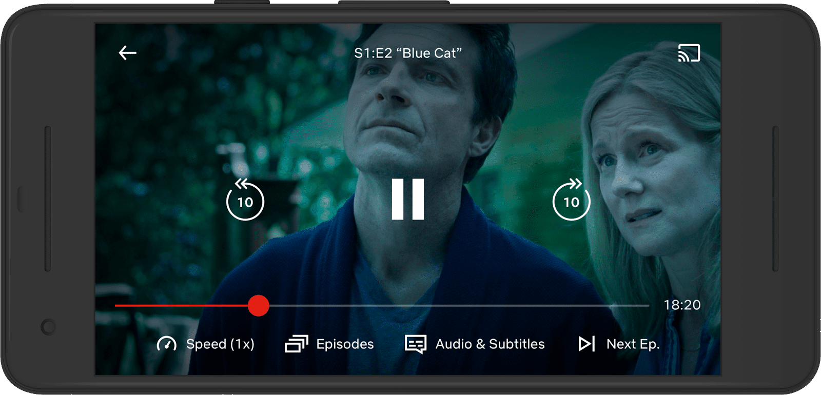 Netflix playback controls