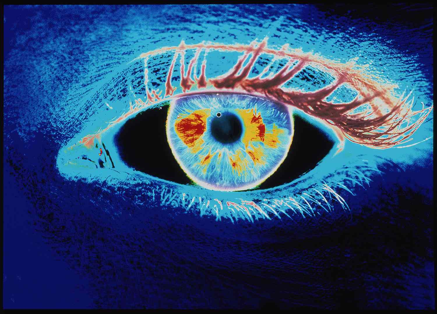 Computer graphic of a human eye (negative-image)