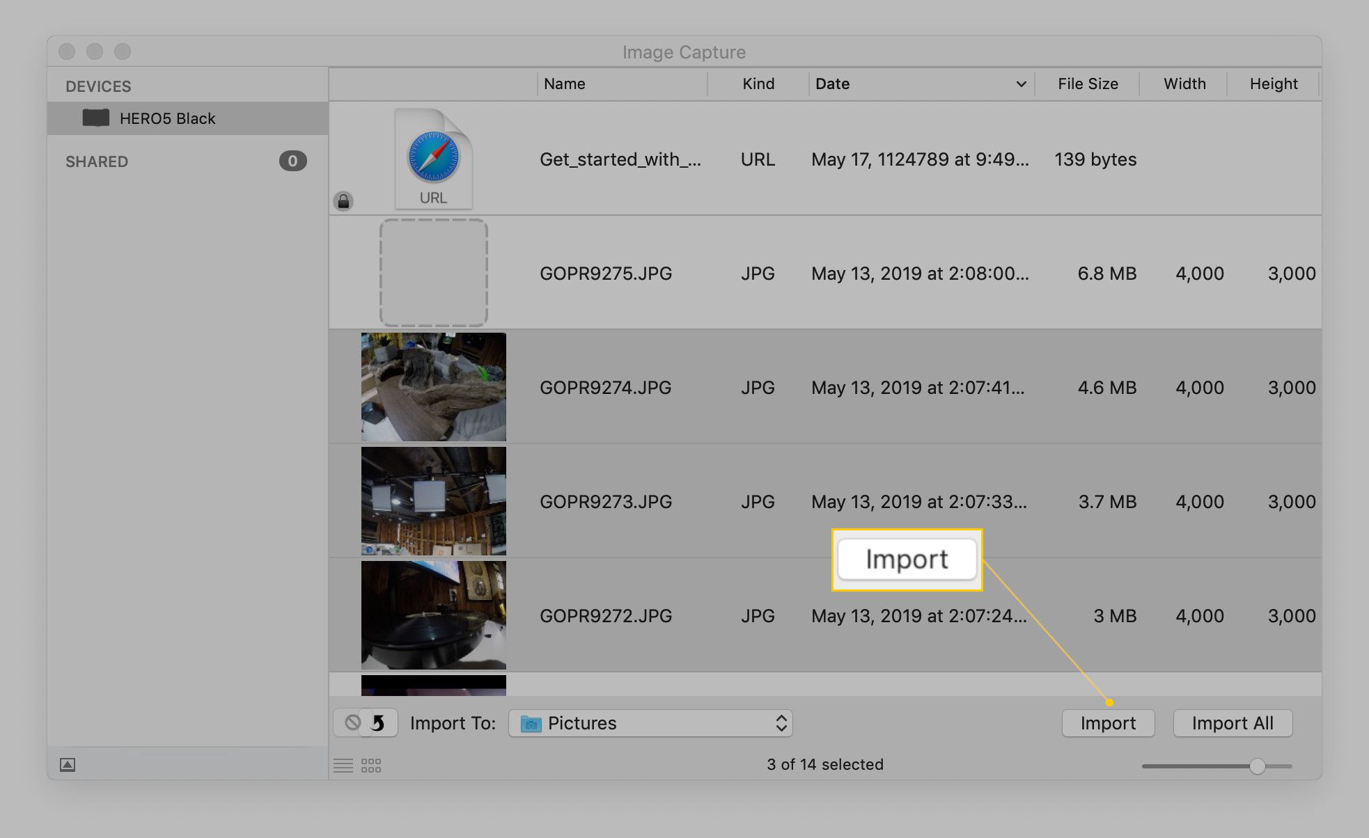 Screenshot of the Import button.