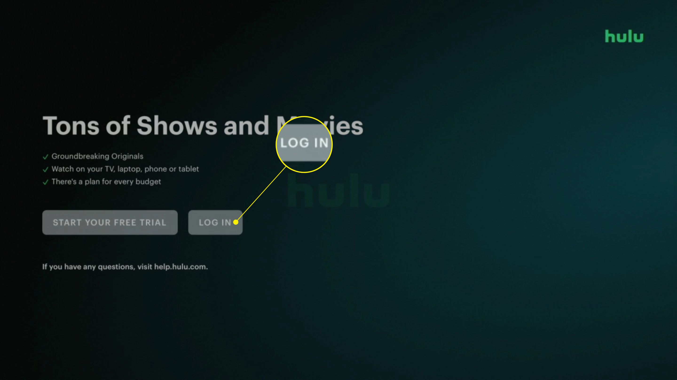 The login page in the Hulu app with Log In highlighted