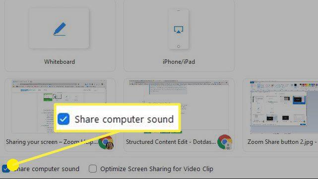 Zoom share computer sound option