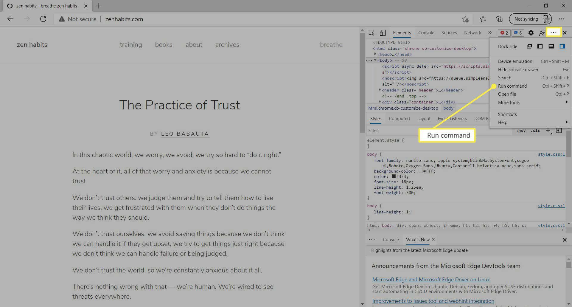 The Run command under the Open Customize and control DevTools menu in Microsoft Edge.