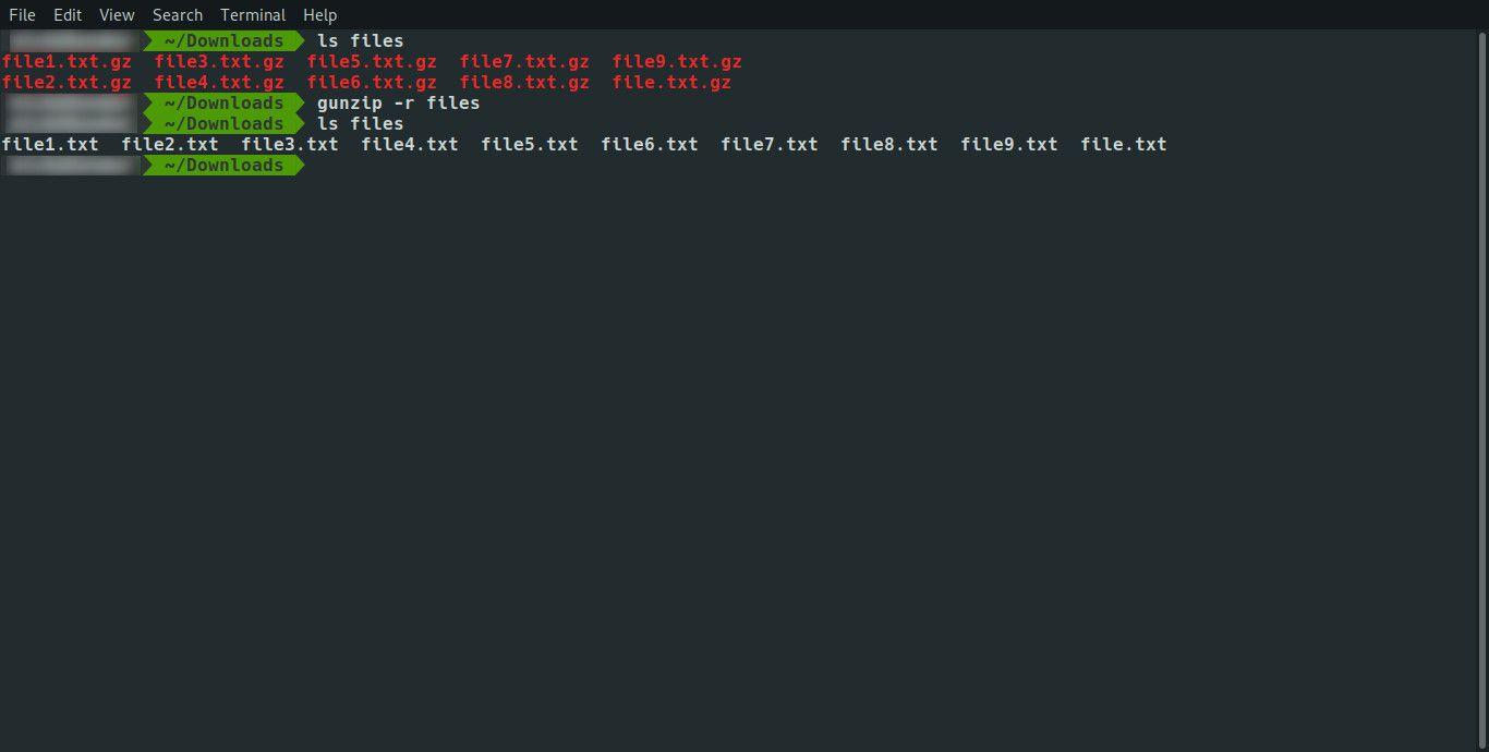 Linux gunzip directory
