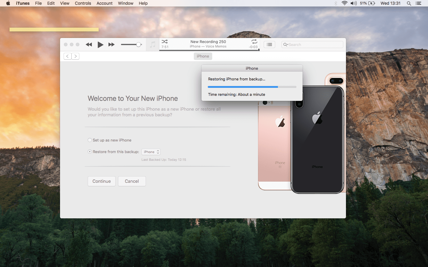 Restoring the iPhone