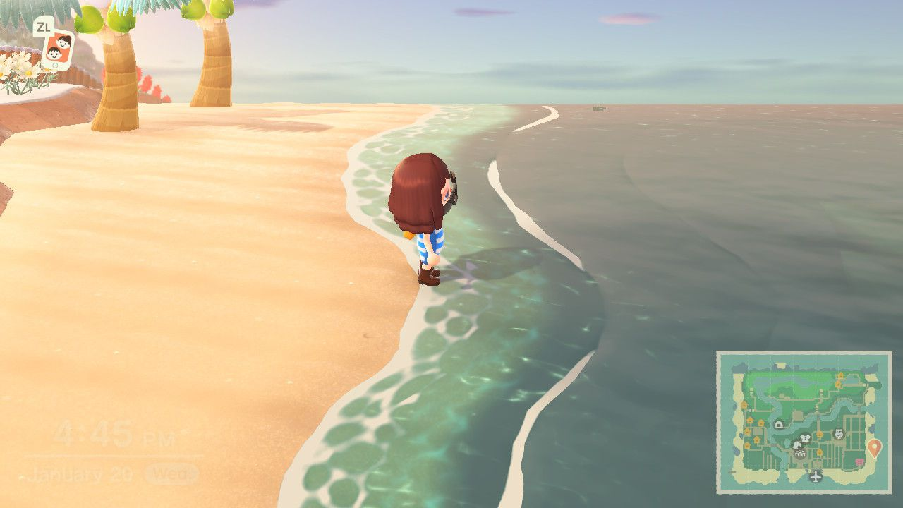 Approaching the ocean to swim in Animal Crossing.
