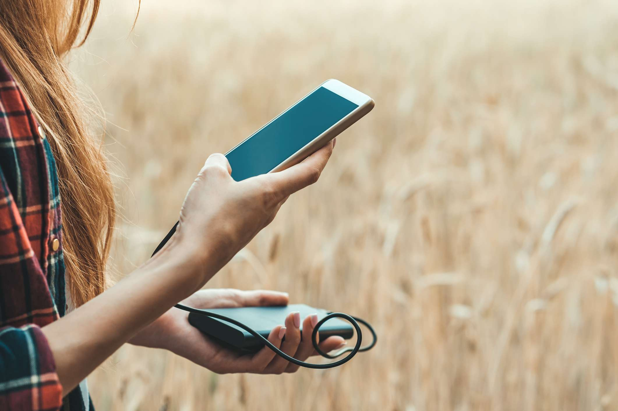 Someone in a sunny, yellow field holding a smartphone connected to a power bank.