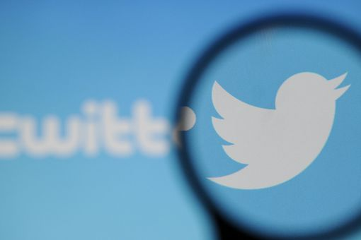 The twitter logo under a magnifying glass