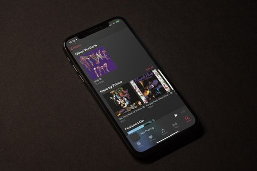 Apple Music with Other Version of Prince 1999 on an iPhone X