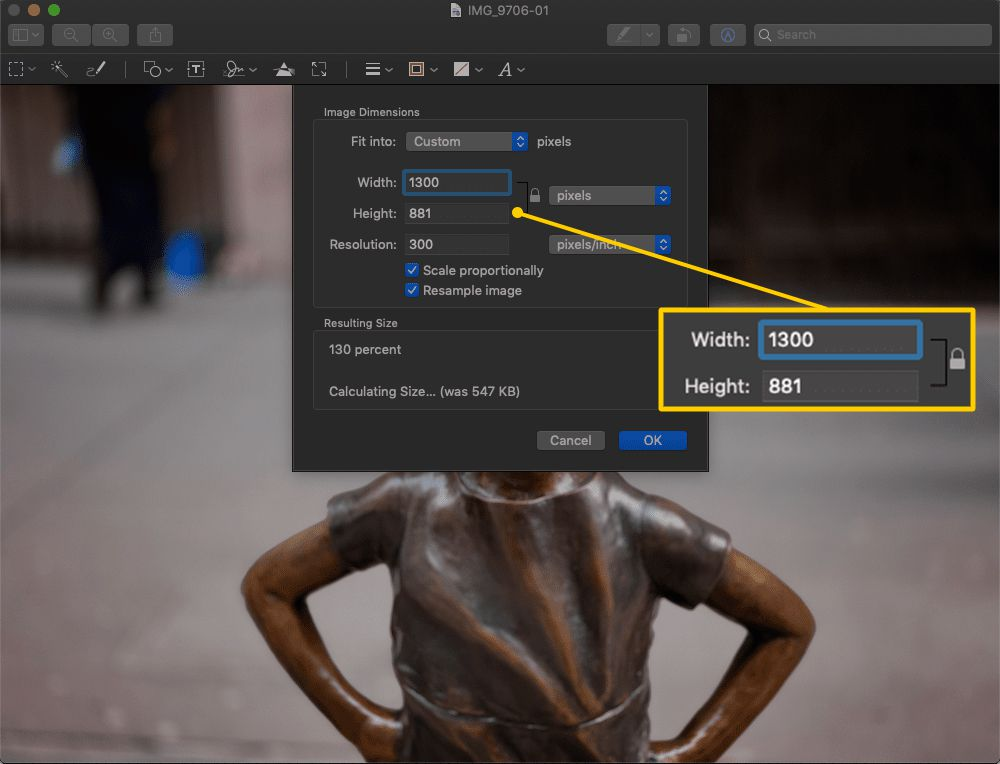 Width and Height fields in Preview on macOS