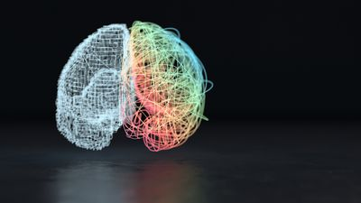 A conceptual image of the left and right brain hemispheres.