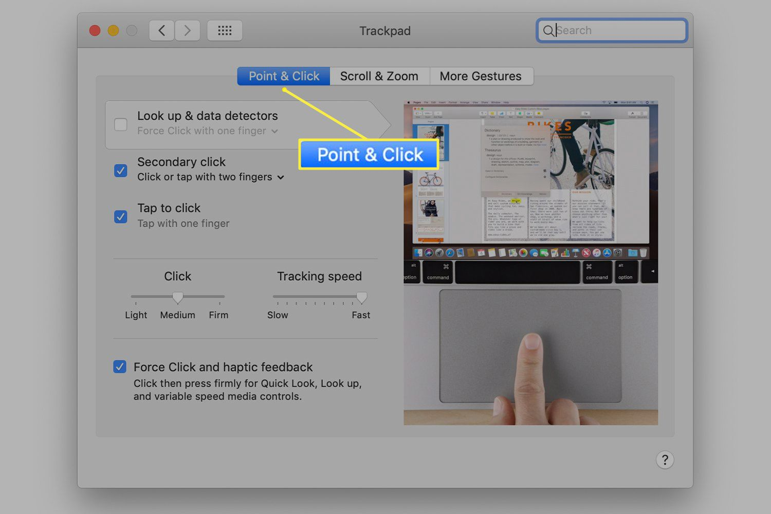 Trackpad preferences with the Point & Click tab selected