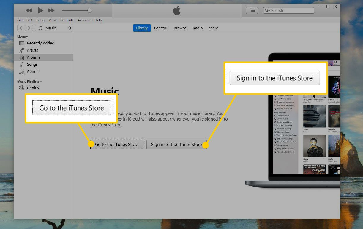 Sign-in screen for iTunes with buttons highlighted