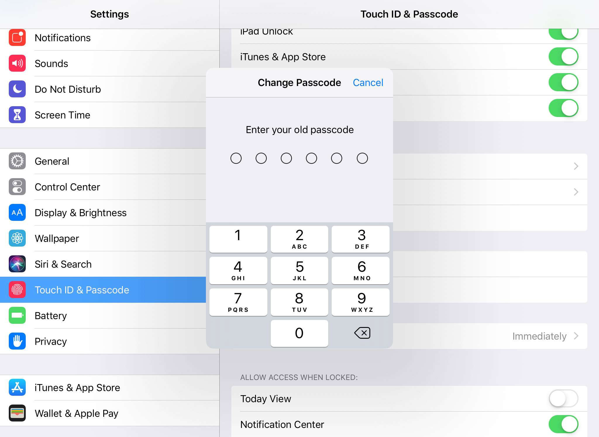 Setting or Changing Your iPad Passcode and Fingerprint