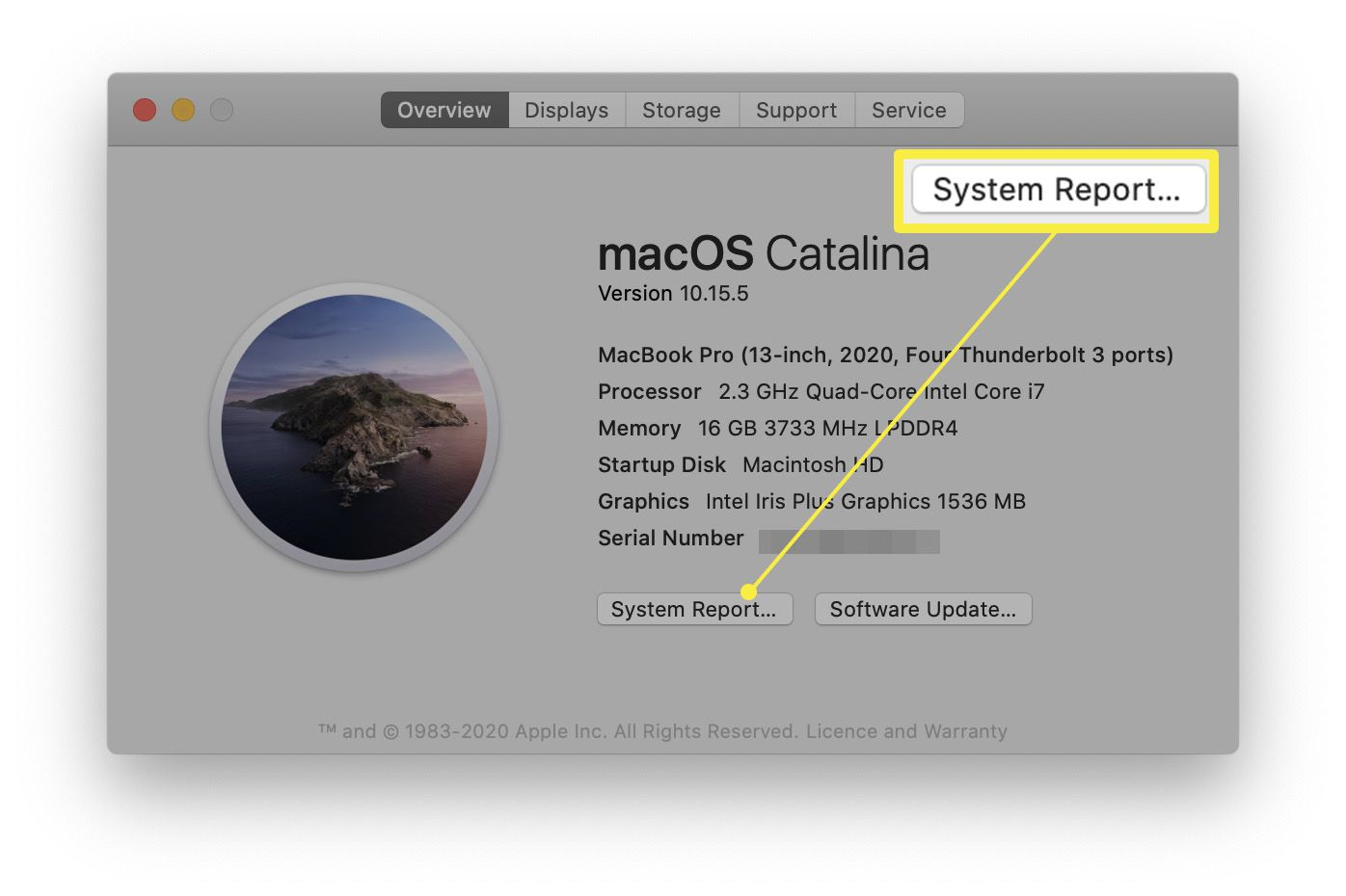 MacOS About This Page screen with System Report highlighted