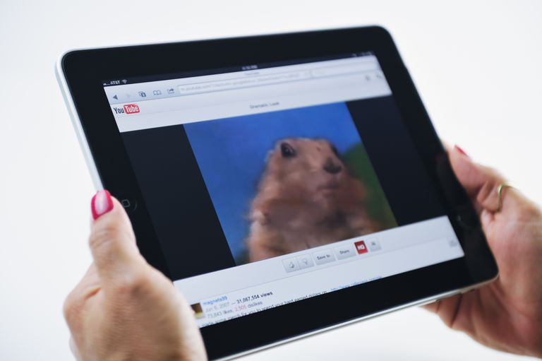 iPad Displaying YouTube and Dramatic Prairie Dog Video with YouTube video sharing options
