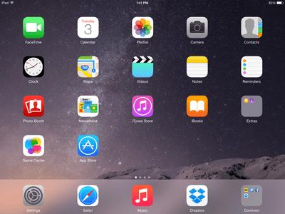 The iPad home screen