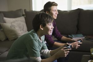 Brothers playing video games in living room