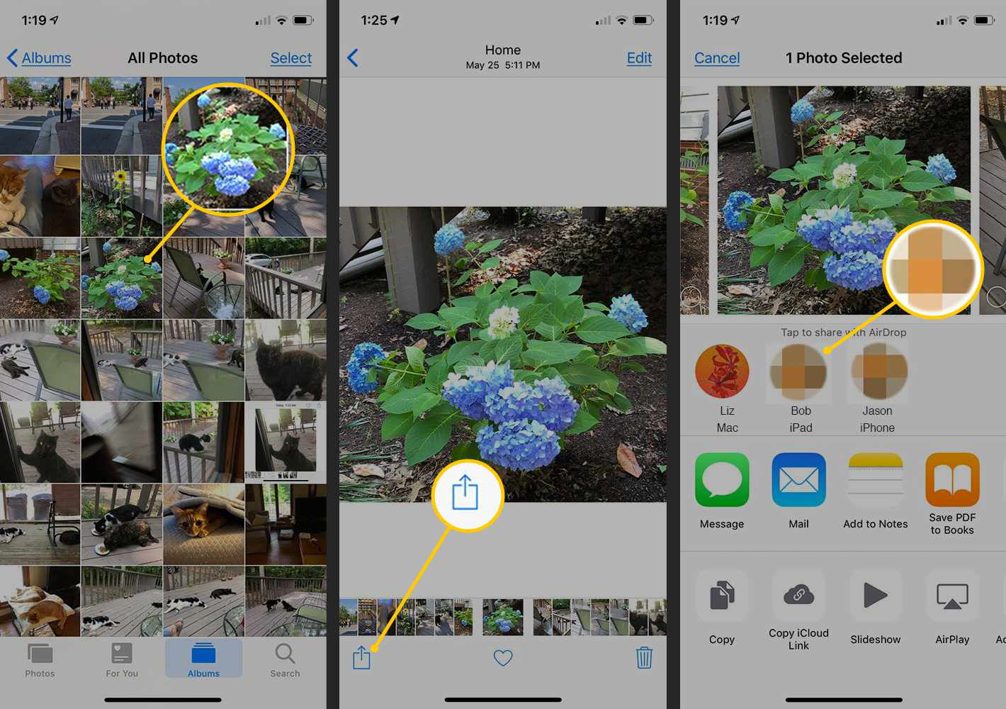 Image selection, Share button, AirDrop icons