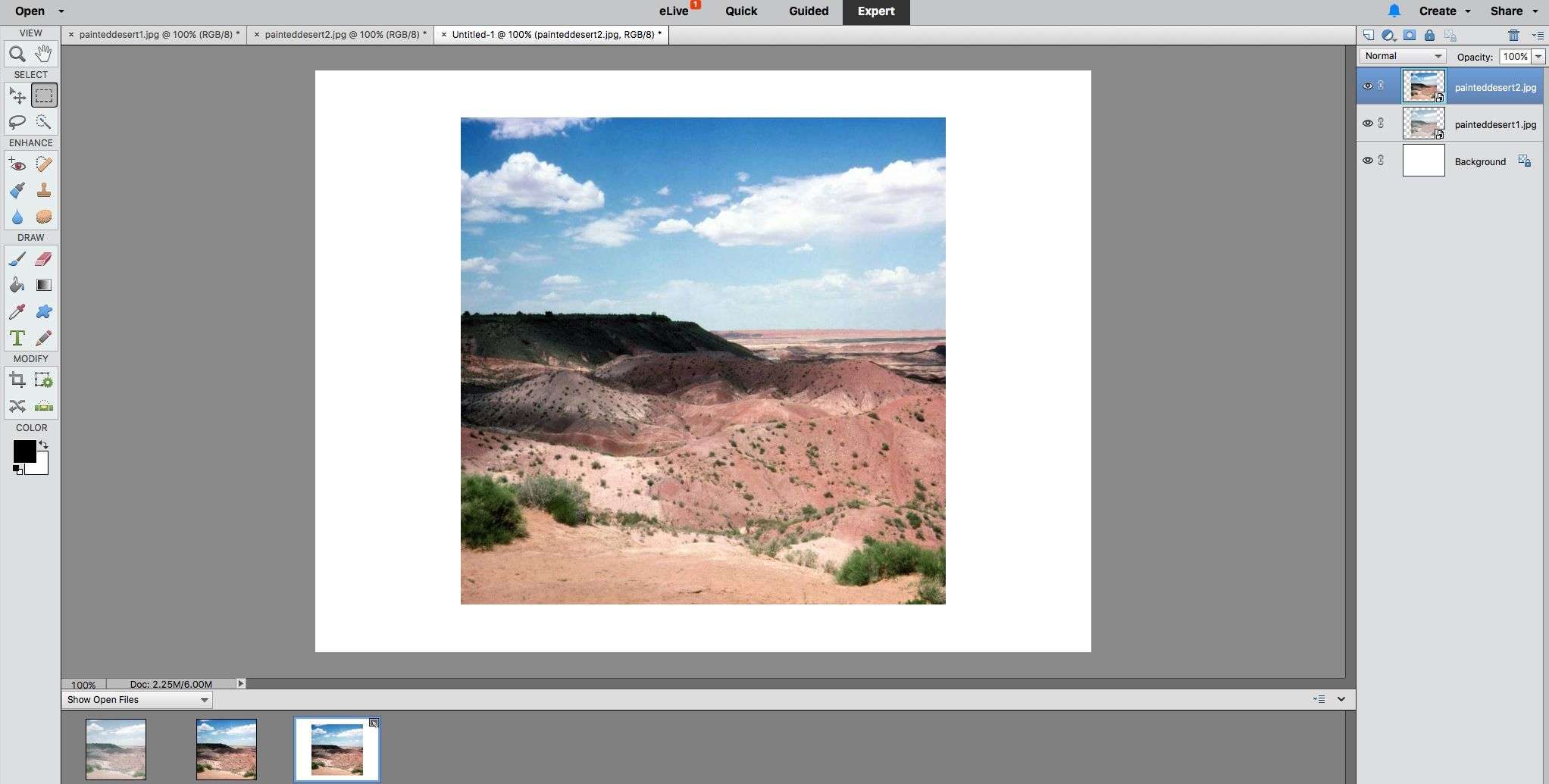 Combine Photos on One Page in Photoshop Elements