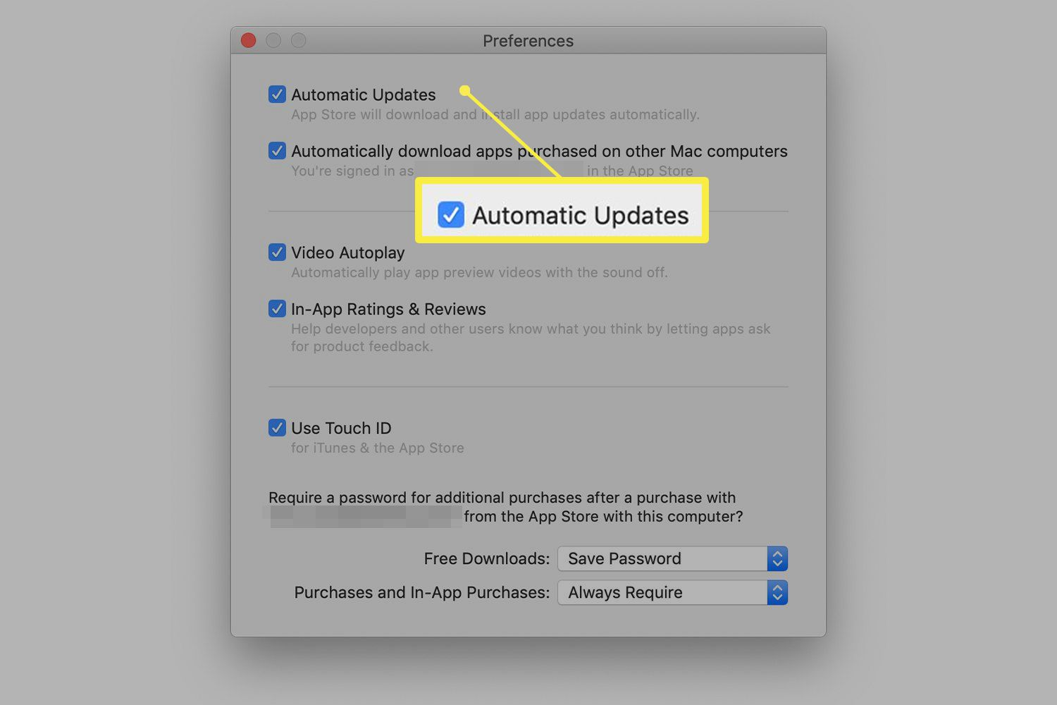 Apple Store preferences showing automatic update options