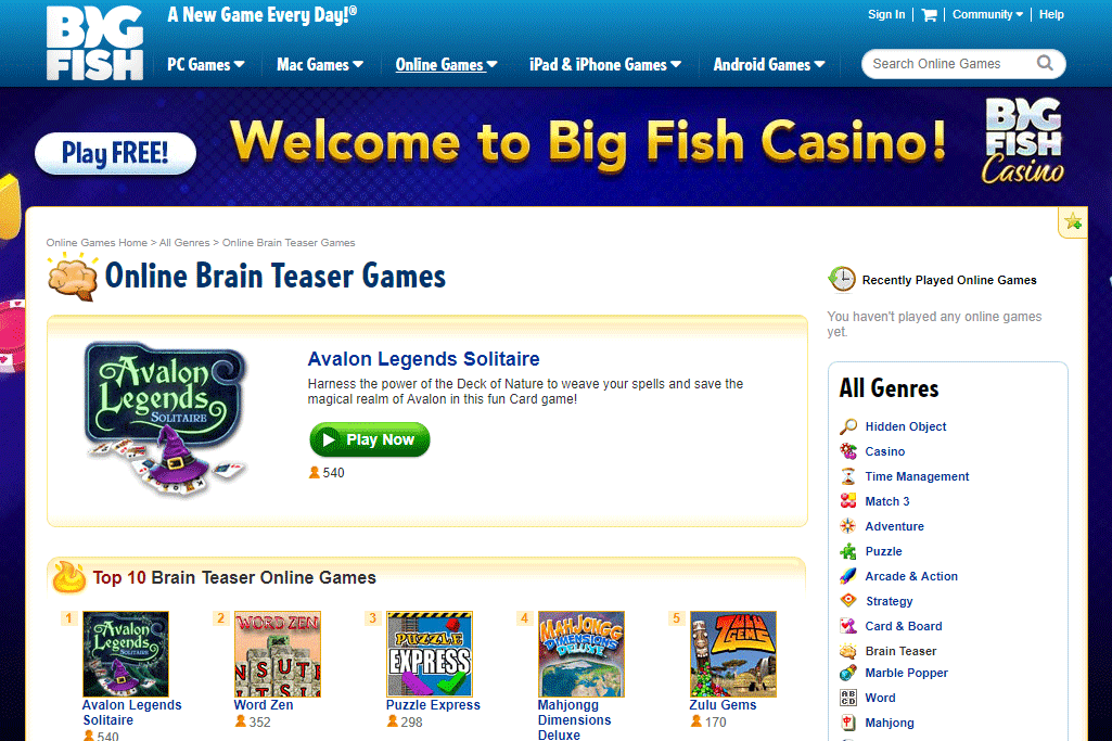Online brain teaser games at BigFishGames.com