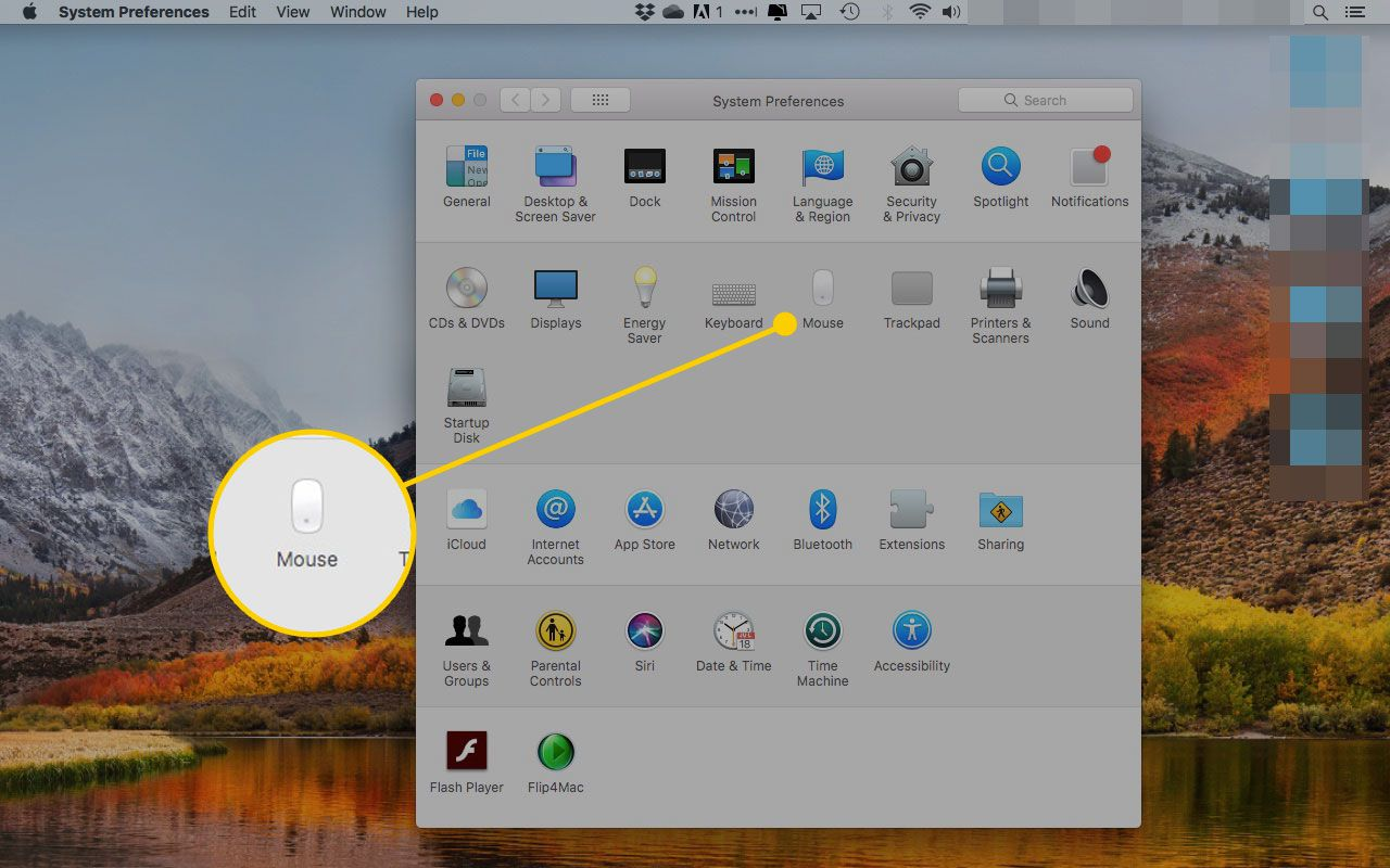 System Preferences on a Mac with the Mouse section highlighted