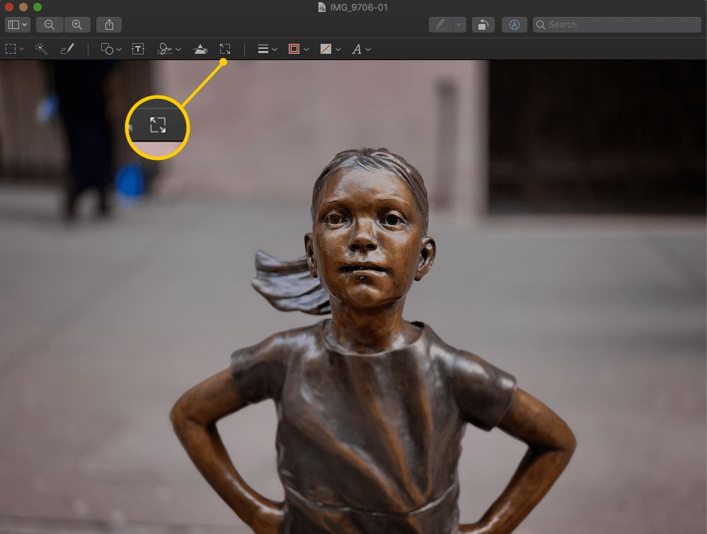 Adjust Size icon in Preview on macOS