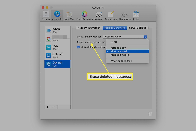 Mac Mail accounts preferences