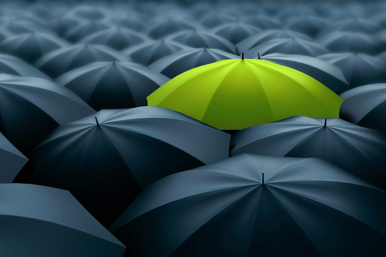 Green umbrella contrasting a sea of black umbrellas