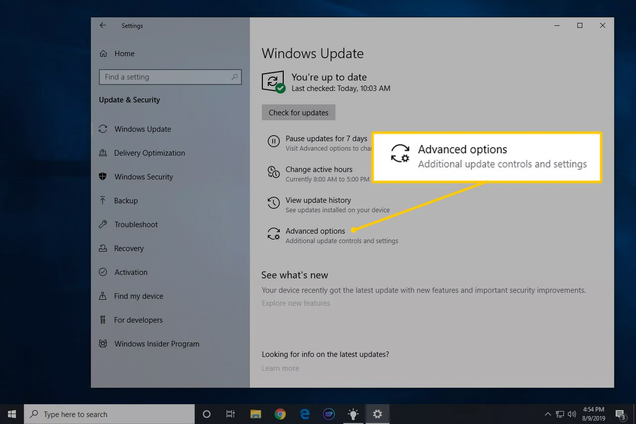Advanced options icon in Windows Update panel