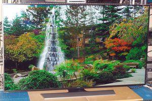Samsung UN55HU8550 LED/LCD 4K 3D UHD TV - Photo - Front View - Garden