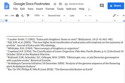 Screenshot of Google Docs footnotes