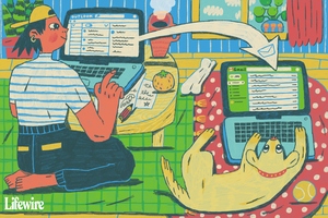 Illustration of a person forwarding an email to a dog using a laptop